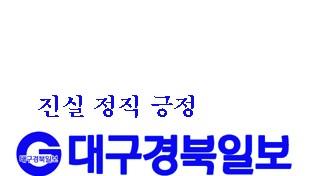 경북도, 청년맞춤형 정책 기반 마련